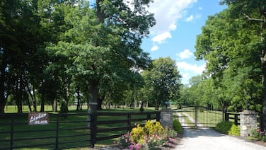 Linden Place is a new gated Cabin located in the middle of Bluegrass Horse Farms