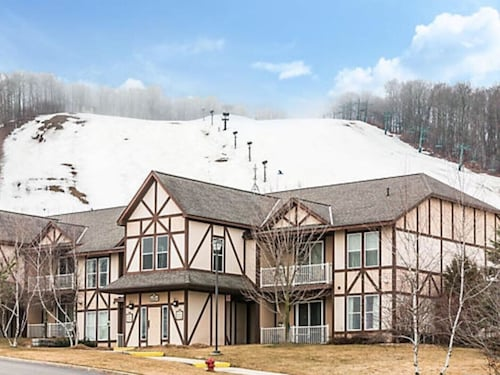 Boyne Mountain Luxury 1 BR Full Kitchen Condo