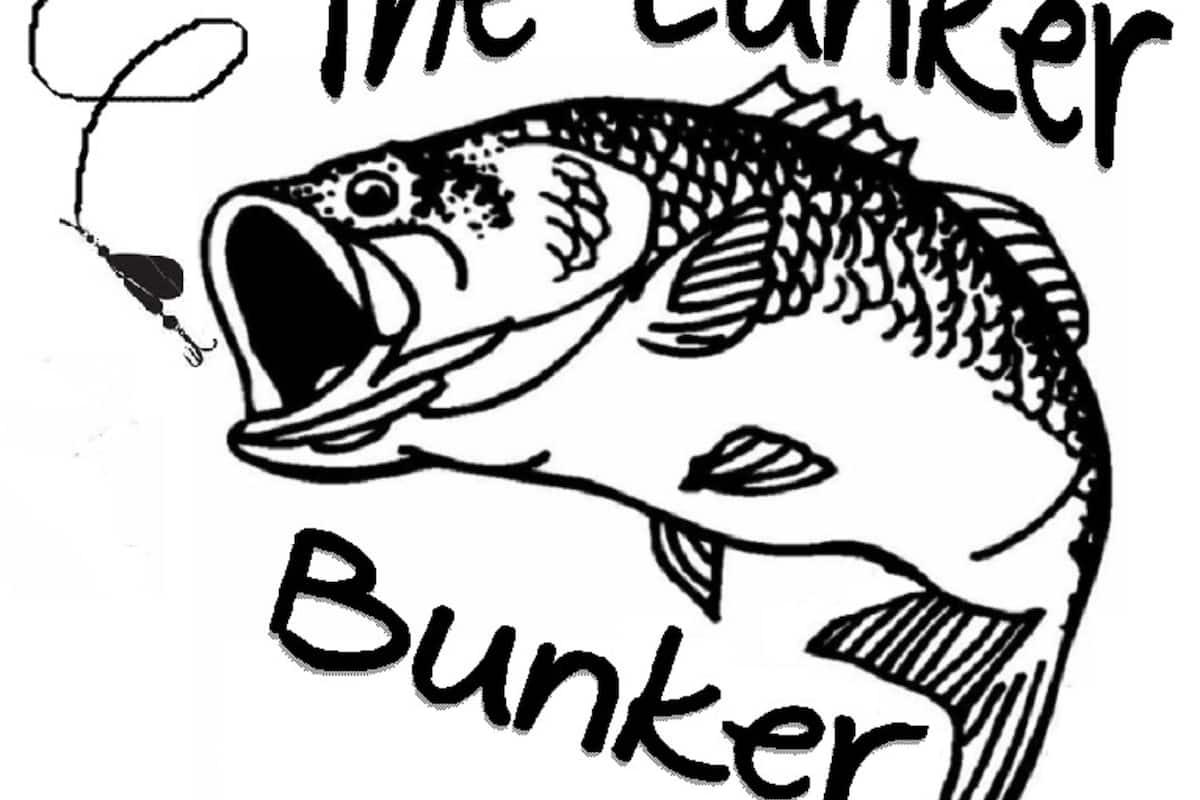 Cartoon Fisch Mit Sprechblase Stock Vektor Art und mehr Bilder von ClipArt  - iStock