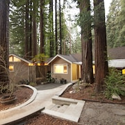 Relaxing Family Friendly Cabin in the Heart of the Redwoods-dogs Welcome!