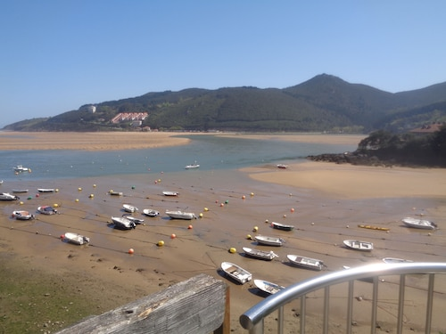 Holidays in the Urdaibai Biosphere Reserve Access Through Operator