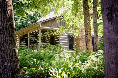 Cabin at Magic Tree Sanctuary On 53 Acres, Private, Just Off Blue Ridge Parkway