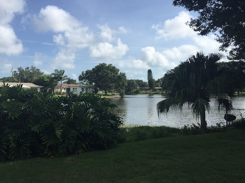 Hotels near St  Petersburg College - Seminole Campus in St