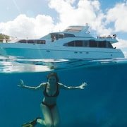 Your own Private Motor Yacht With Skipper
