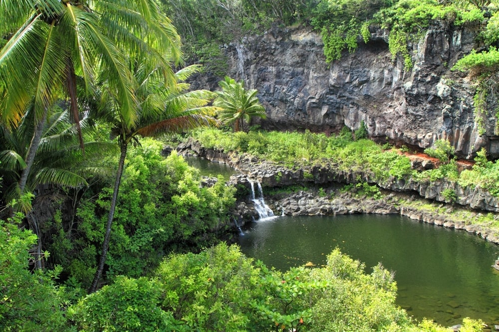 Property Grounds, Hana Kai Maui - Partial Oceanview