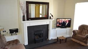 TV, fireplace, DVD player, books