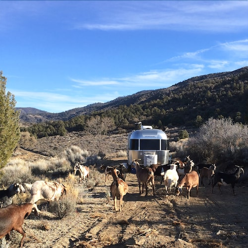 Tiny Airstream at Goat Ranch in San Gabriels