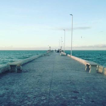 Blue Point Chuburna Puerto Yucatan Mexico, Mérida: 2019 Room