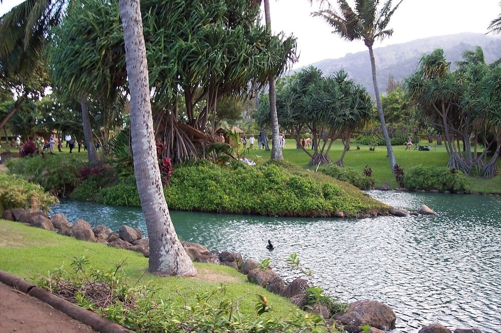 Property Grounds, Aloha on Maui! Updated Studio With the Luxury of Home~ Inquire Now~