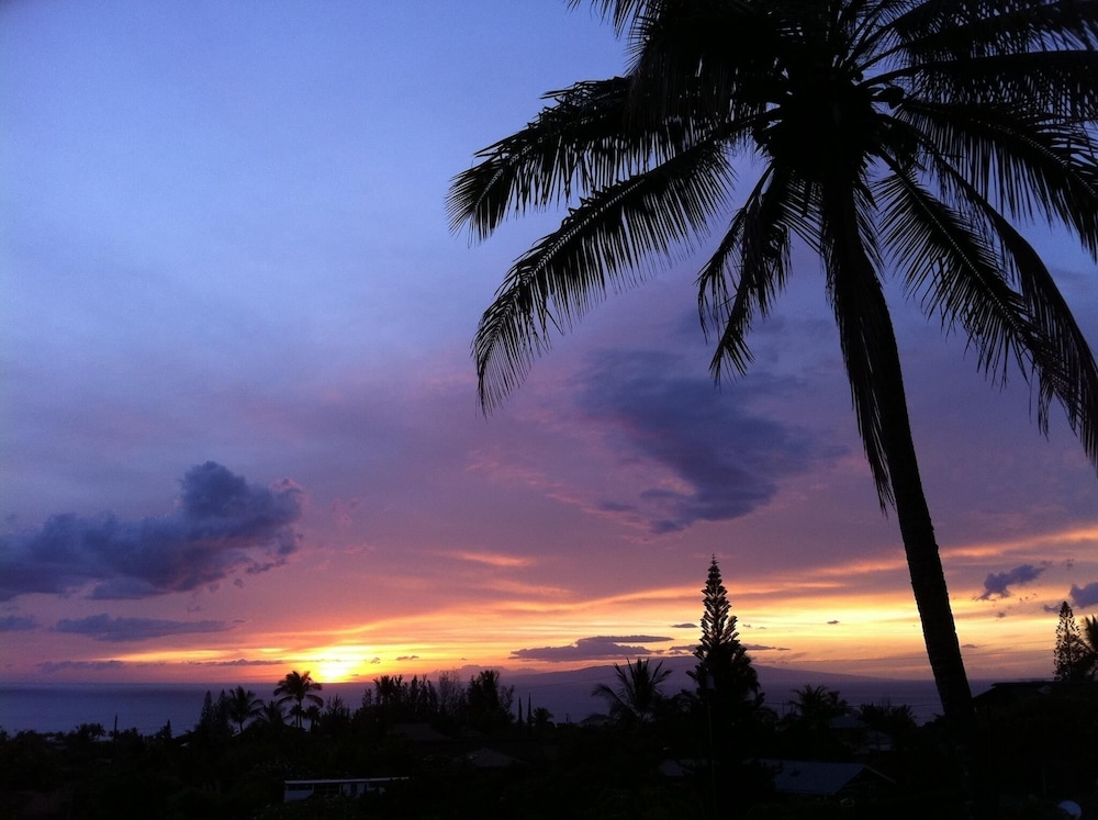 , Aloha on Maui! Updated Studio With the Luxury of Home~ Inquire Now~