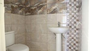 Combined shower/tub, bidet