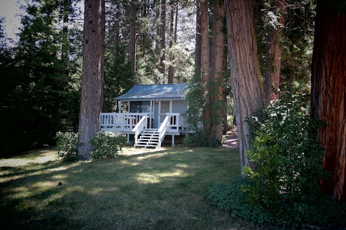 Lakefront Romantic Getaway -- The Little Blue Cabin