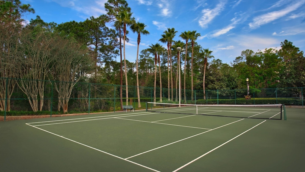 Sport Court, Marriott's Grande Vista--close to Disney World, Sea World