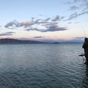 Fishing Camp/lake Getaway. Pyramid Lake Nevada, Lahotan Cutthroat Trout