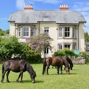 Dartmoor House B&B