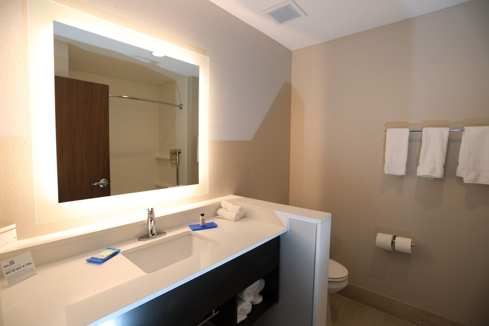 Bathroom, Holiday Inn Express And Suites Forney, an IHG Hotel