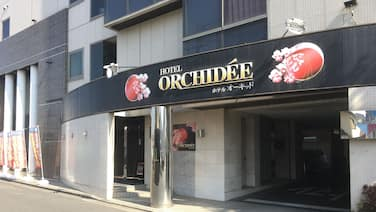 Hotel Orchidee - Adult Only