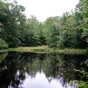 호수 전망