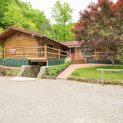 Gorgeous Single Floor Plan Cabin on 20+ Private Acres With hot tub and Seasonal Waterfall!