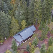 Secluded Marshall Cabin for Fall Retreats, Woodstove, Bbq, Dog-friendly