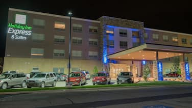 Holiday Inn Express & Suites Orland Park - Mokena