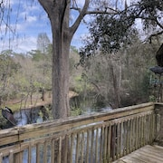 Back Deck Overlooks the Beautiful Withlacoochee River. A Perfect Weekend Getaway