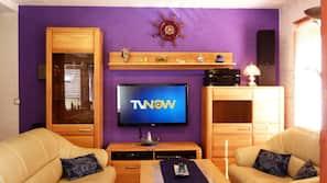 Fernseher, DVD-Player