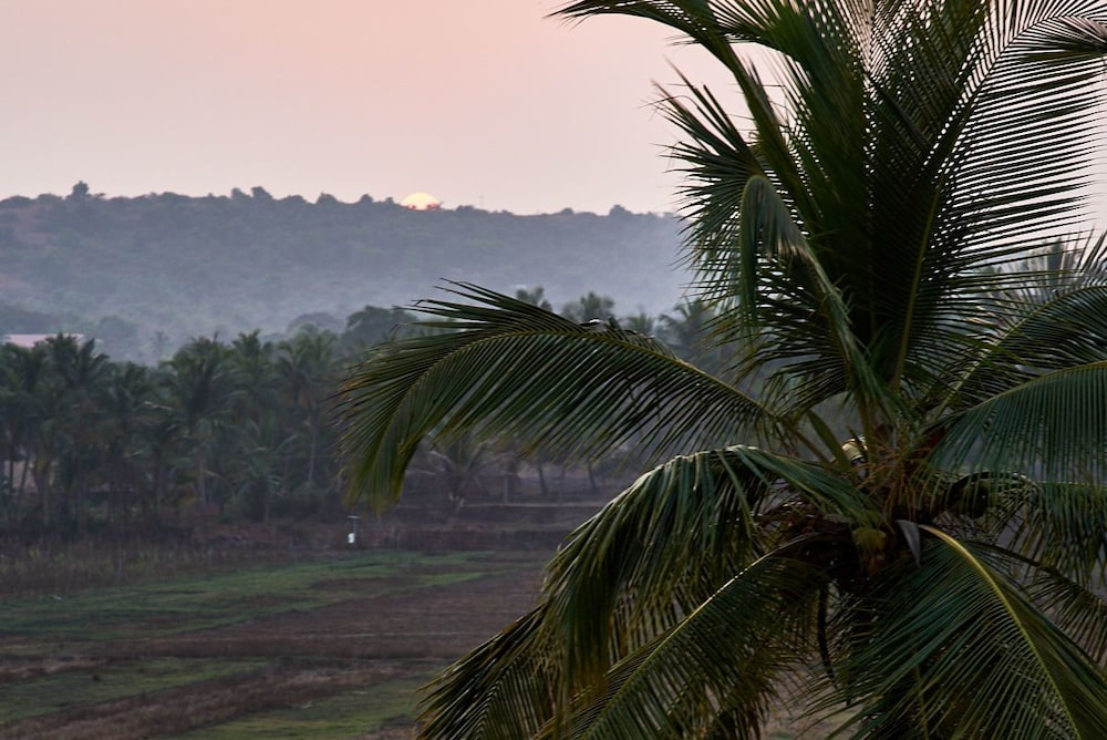 View from Property, Moustache Goa CoWork Hostel