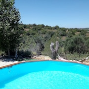 Property With 3 Bedrooms in Silves - 5 km From the Beach