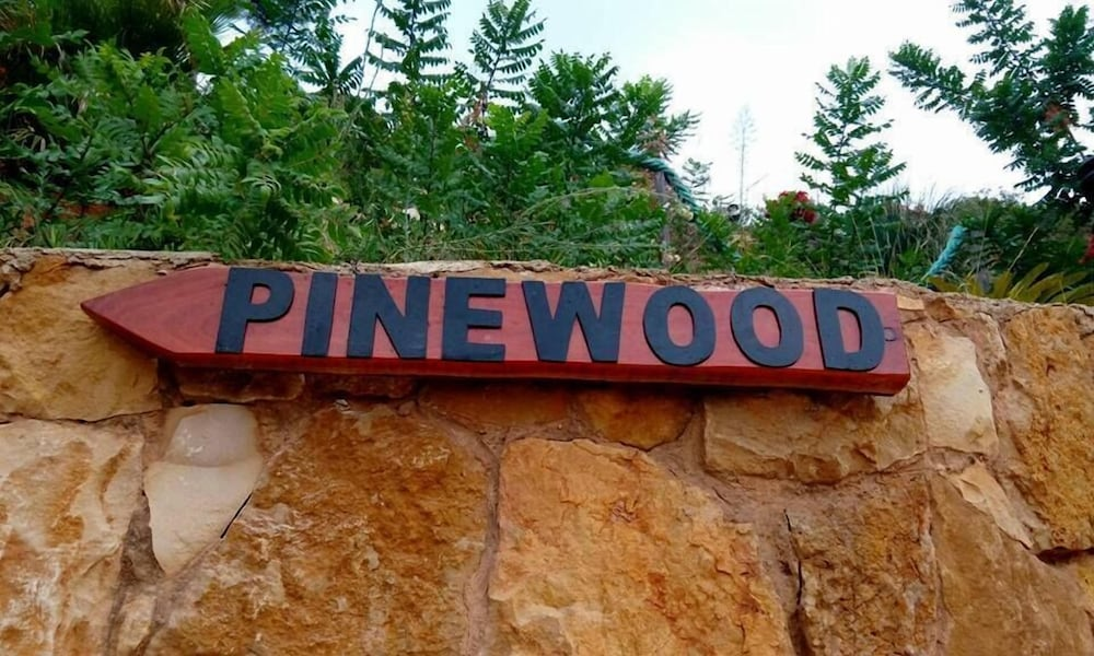 Exterior detail, Pinewood Hotel