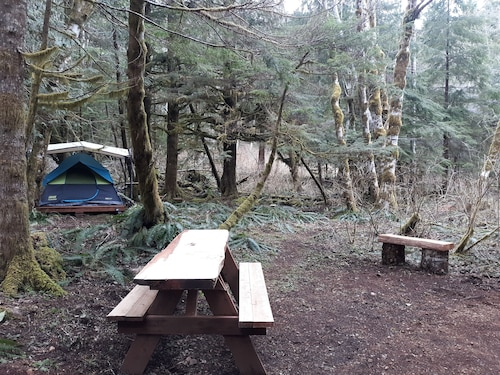 Rainforest Retreat Glamping Tent 4