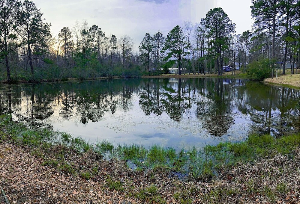 Lake, Secluded Property: 9 Acres With 3 Fishing Ponds Near the Ocean and Military Base