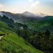 Linten Holiday Resort, Property set in Munnar.4.7km From Munnar Town