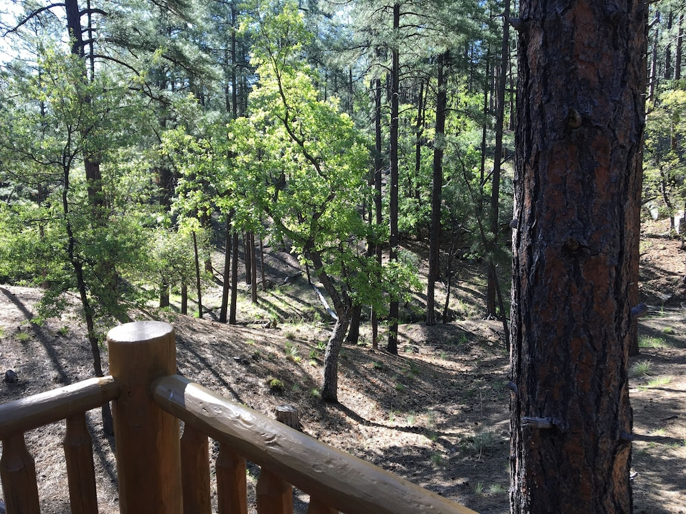 , Guest House With Deck in the Forest Just West of Prescott