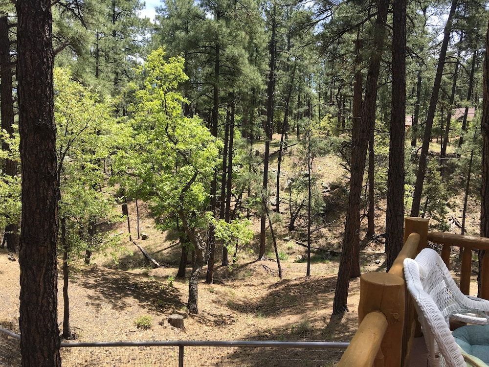 Property Grounds, Guest House With Deck in the Forest Just West of Prescott