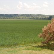 Vue sur la campagne depuis la pr