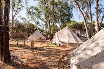 Camping Playa Taray Reviews Photos Rates Ebookers Com