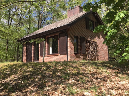 Detached Holiday Home on the Veluwe in Emst. Quietly Situated in the Forest