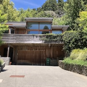 Tranquil Indoor/outdoor Modern Luxury in Southern Marin Mill Valley Paradise