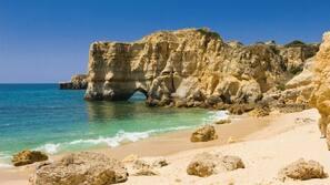 Beach nearby, beach shuttle