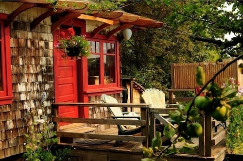 Orchard Cabin - A Cozy Cabin in a Peaceful Orchard Close to Ganges