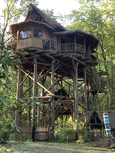 Tropical Treehouse Surrounded by Jungle Gardens