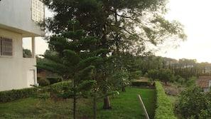 Área do estabelecimento