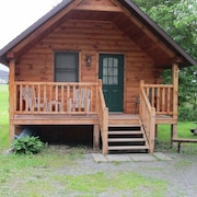 West Branch Delaware River Riverfront Cabin