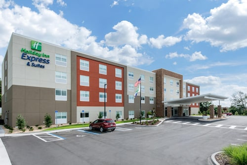 Holiday Inn Express & Suites Ruskin