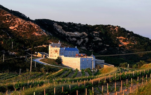 Penglai Treatyport Vineyards