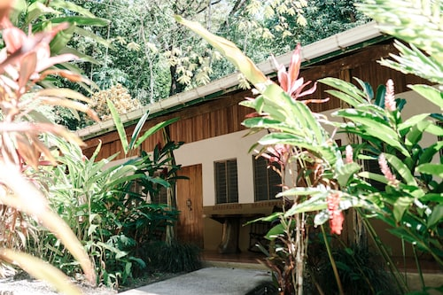 Star Mountain Jungle Lodge