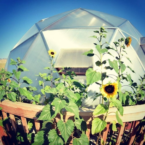 Geodesic Dome Greenhouse, Garden, and bed and Breakfast