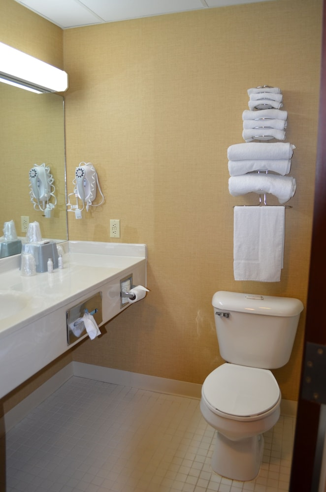 Bathroom, Brookshire Inn & Suites
