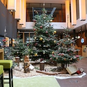 Holiday Inn Schindellegi - Zurichsee